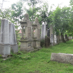 The Jewish cemetery in Făgăraș. CREDIT: Benjamin Fox-Rosen.