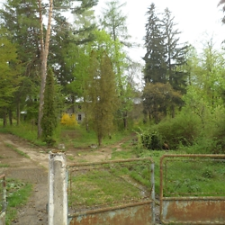 The building which originally housed the spa and resort in Solca, popular during the Habsburg and interwar period, is today abandoned and lies beyond this overgrown terrain. CREDIT: Julie Dawson