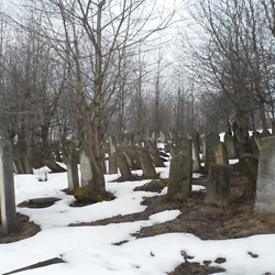 New Jewish Cemetery in Burdujeni. CREDIT: Julie Dawson