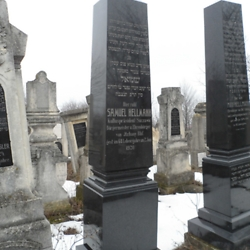 Gravestones in the Jewish cemetery. These two are for Samuel and Max Hellmann (possibly brothers). Samuel was a mayor of Iţcani and eventually became the president of the nearby Suceava Jewish community. Max Hellmann was a member of the Austrian parliament. CREDIT: Julie Dawson