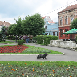 The main square in Făgăraș. CREDIT: Benjamin Fox-Rosen.