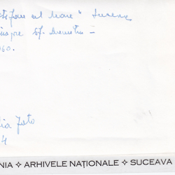http://jbat.lbi.org/media/suceava_photo_coll_folder204b.jpg